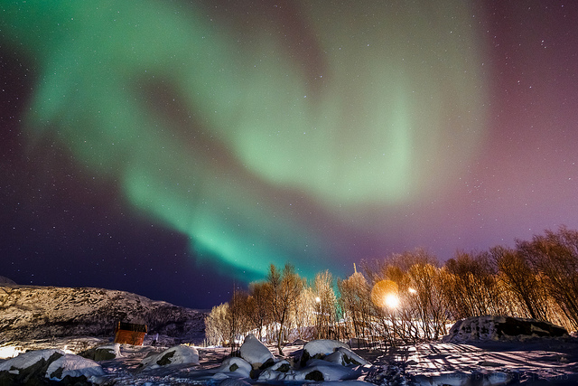The Northern Lights in Tromsø. Photo by Ronel Reyes.