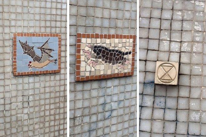 Xylo street art